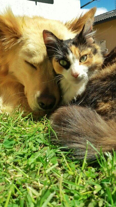 Nikita & Lupin #bestfriends