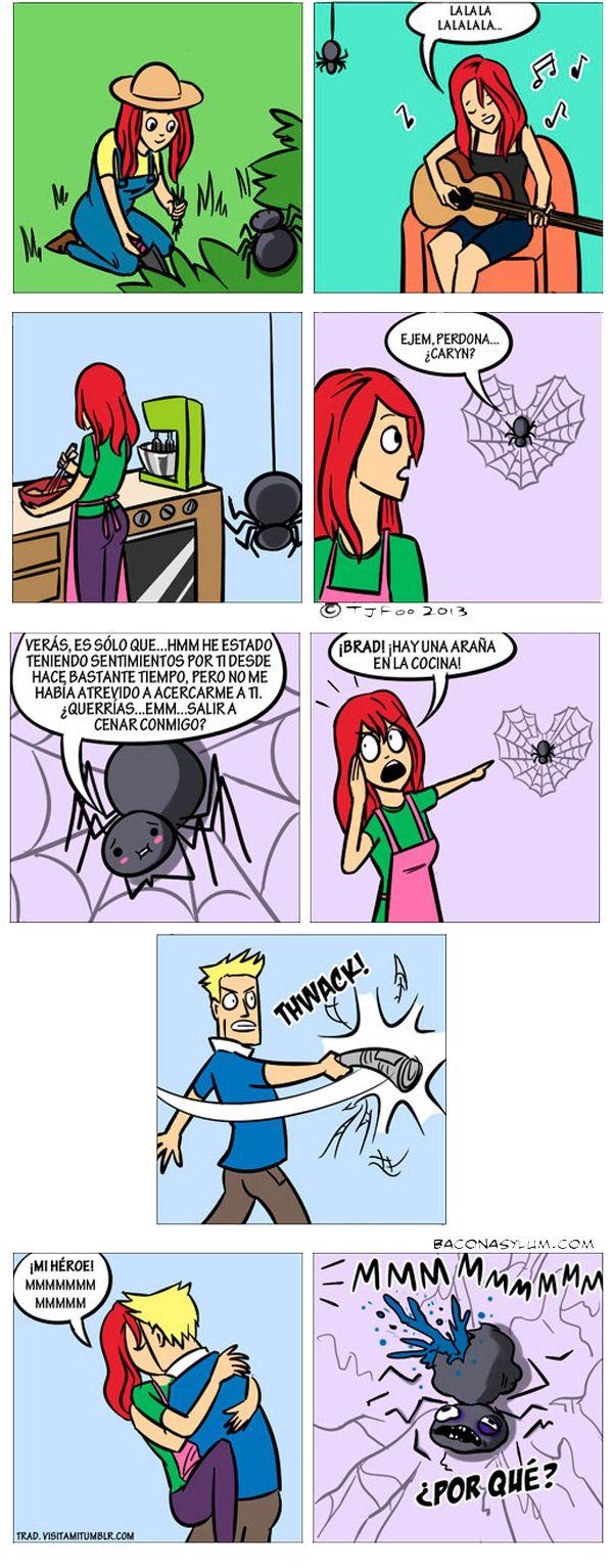 la araña está enamorada, tiene miedo, grita, le pega, la mata, lo besa