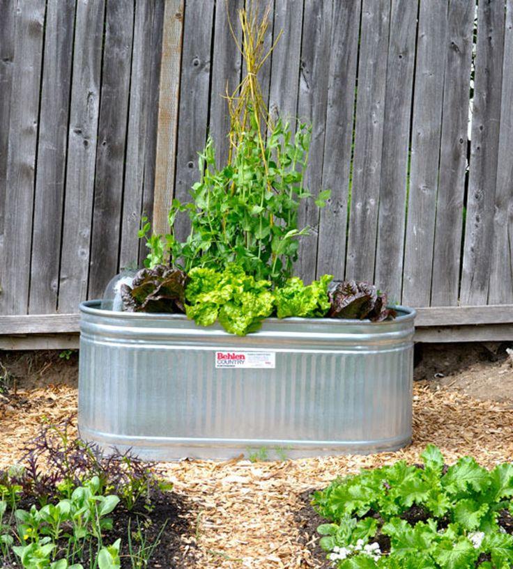 DIY Water Trough Planter — The Gardener