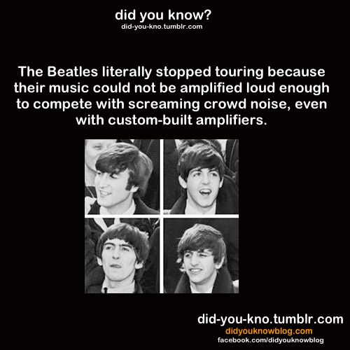 Famous Beatle Quotes: 68 Best Beatles Jokes Images On Pinterest
