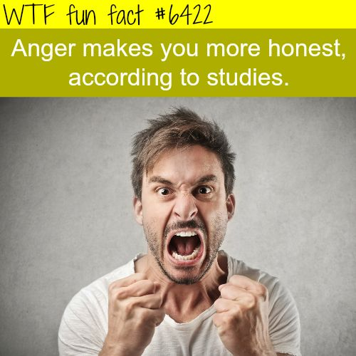 Anger makes you more honest - WTF fun facts