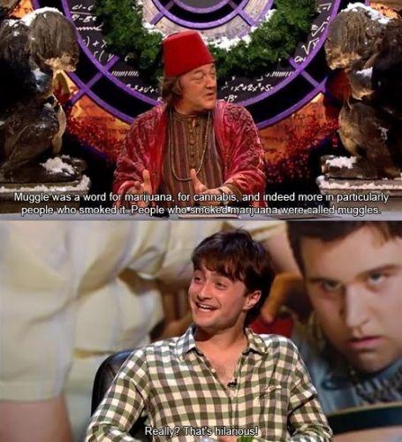 QI, Stephen Fry, Daniel Radcliffe, Harry Potter, muggles, marijuana, quite interesting