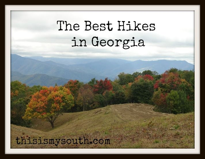 Guest writer Sammi tells us about the Best Hikes in Georgia.