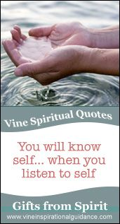 Spiritual quote from Australian Psychic Vine about understanding the energy of Stillness. www.vinemedium.com.au