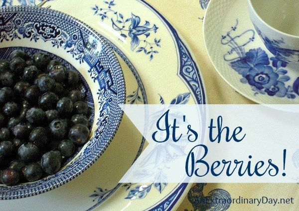 Hello World! It has been so busy around here. Little Dedicated's after school activities have been keeping me so busy. I'm definitely ready for the weekend!  Are you ready for our little blue soiree?  Welcome to Week 70 of: Anything Blue Friday My Favorite Nancy's Daily Dish shared some wonderful blue and white …