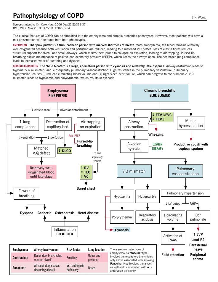 Chronic Obstructive Pulmonary Disease (COPD ...