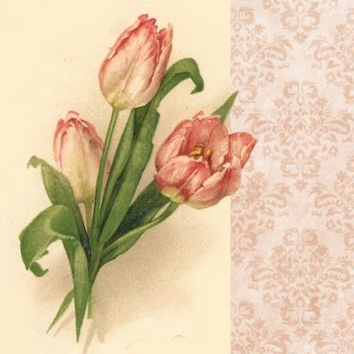 Pink Tulips ~ Spring is Here!  Pink tulip graphic, 3x3 inches.