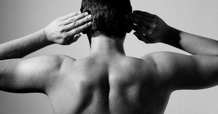 Exercícios para malhar a parte superior das costas. Os benefícios de entrar e permanecer em boa forma demandam esforço e, quando você começar os exercícios, rapidamente descobrirá que ganhar peso é muito mais fácil do que perder. Perceberá que a parte superior das costas é uma das áreas mais difíceis de perder gordura. O músculo predominante nessa parte é o músculo dorsal. Pode-se focar nos ...