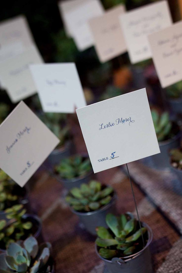 50 Best Take A Seat Images By Bellwether Events On Pinterest