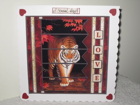 TIGER 7.5 Alphabet and Age Quick Card Kit Create Any Name - CUP796683_68   Craftsuprint