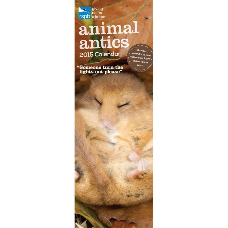 I helped give nature a home and bought Animal antics calendar 2015 from the RSPB.  http://shopping.rspb.org.uk/animal-antics-calendar-2015.html