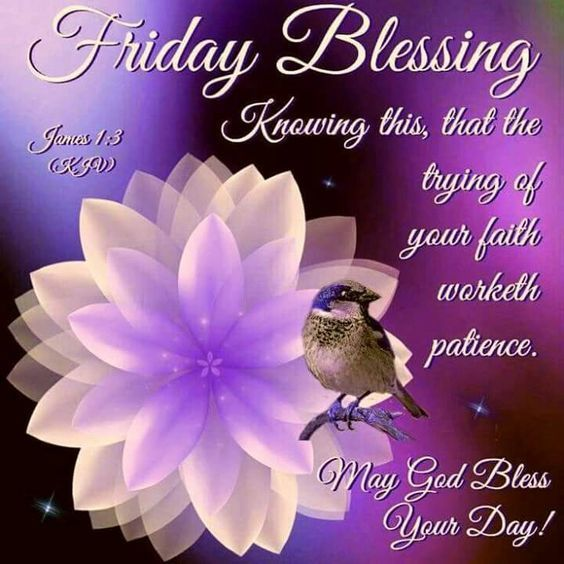Friday Blessing friday friday quotes friday blessings blessed friday quotes friday blessing quotes friday blessing images