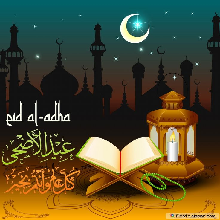 eid al-adha   10 Luxury Eid Al-adha Collection Images 2014   Amazing Photos