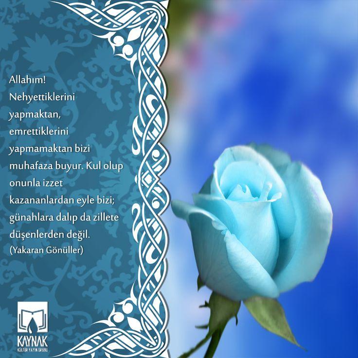 Hayırlı #Cumalar ... #cuma #dua #pray #friday #kitapkaynagi #dualar #Allah #cicek #gül #Kuran #kitap #book #cumadua