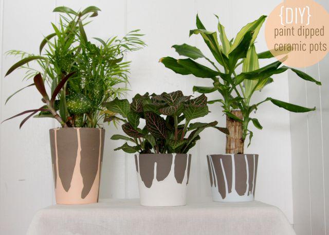 Drip paint plant pots.
