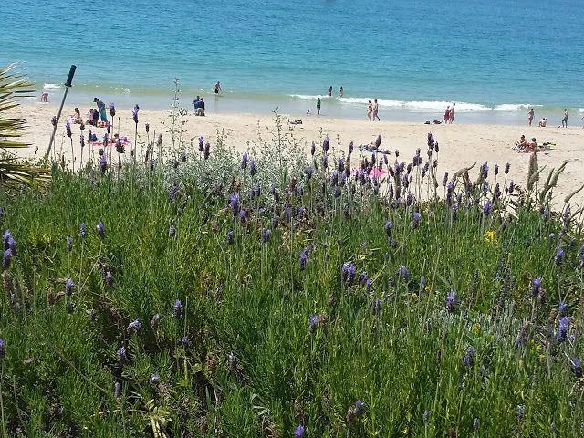 Amigas do Closet: Um passeio por Sesimbra #sesimbra #portugal #paradise #beach #praia