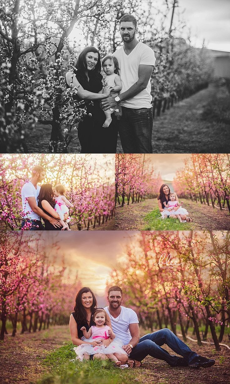 cherry blossom family photo session perth Newborn Photography Perth | Blee Photography