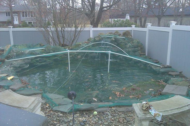 17 Best Ideas About Pond Maintenance On Pinterest Pond