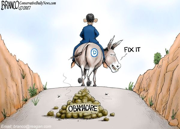 Barack Obama and the Democrat Congress left a pile of road apples for the current Congress and President Trump to clean up as shown by Cartoonist A.F. Branco.