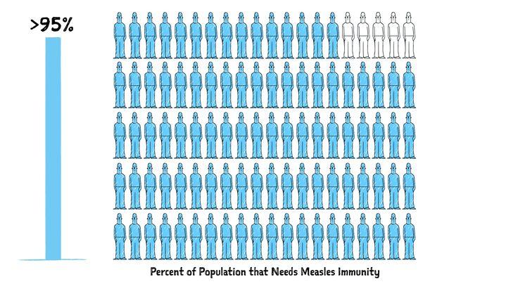 Measles: Herd immunity and maternal immunity
