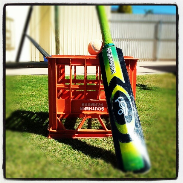 "@aliwestlake's photo: ""Backyard cricket stumps! #birdsnestonline #SOMETHINGRED"""