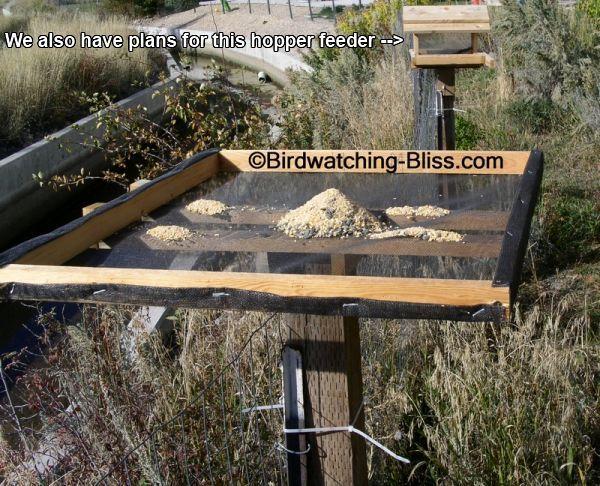 platform bird feeder plans