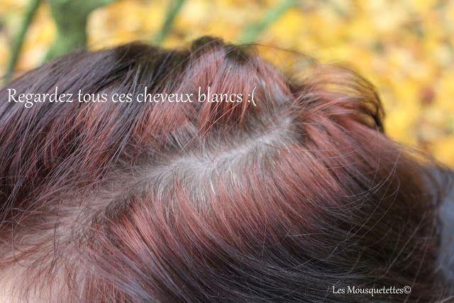 Mes Cheveux Blancs Les Mousquetettes Moi Et La Coloration Capillaire C 39 Est Une Histoire D