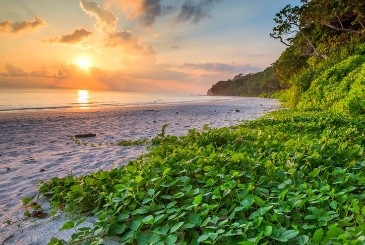 plaża Radhanagar wyspa Havelock (Andamany)