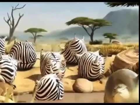 Video Kartun Binatang  http://www.youtube.com/watch?v=fdzqBibDCqg&feature=youtu.be