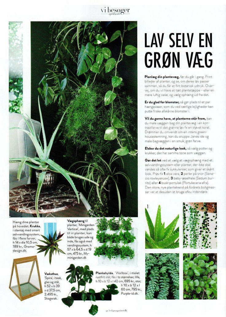 myMinigarden-Plantevæg-Minigarden #Minigarden #plantevæg #lodrettehaver