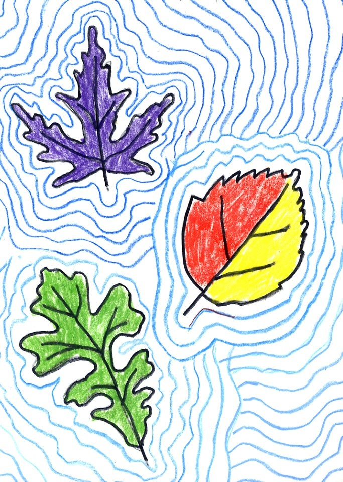 How To Teach Contour Line Drawing : Best children s fall art activities images on pinterest