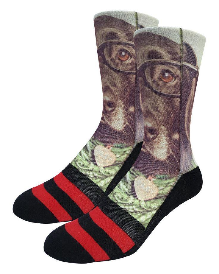 Hipster Dog | Good Luck Sock | goodlucksock.com #socks