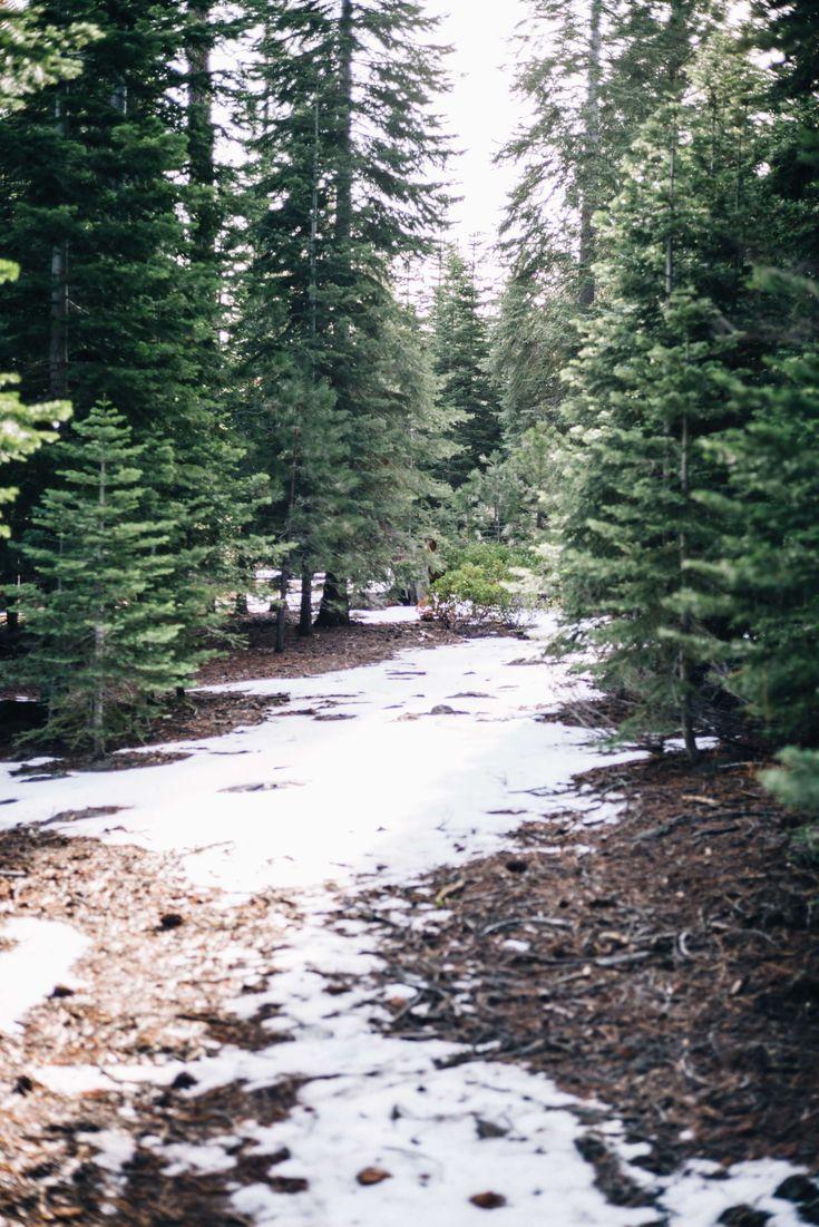 Martis Camp Truckee woods  in Tahoe// Via Audi on Demand with The Taste SF #travel #california #tahoe #hotel #ritzcarlton #truckee #ski #snow #northstar #restaurant