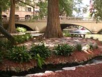 Inexpensive Wedding Venues in San Antonio, Texas. Shown: Marriage Island on the San Antonio Riverwalk.