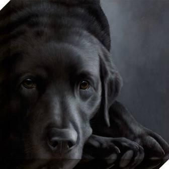 Voor de Labrador en honden liefhebber.   Getekend door de bekende Labrador kunstenaar op canvas.
