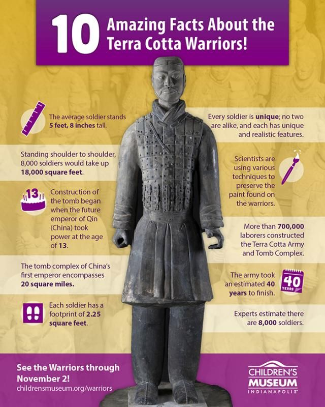 10 Amazing Facts about the Terra Cotta Warriors | The Children's Museum of Indianapolis
