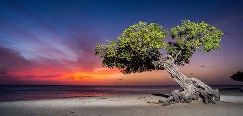 Sun-set ARUBA