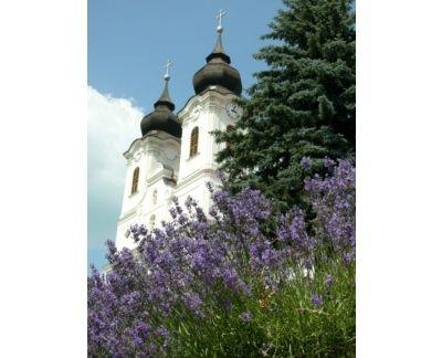 Tihanyi Levendula Fesztivál, Balatonfüredi lazítás-június 20