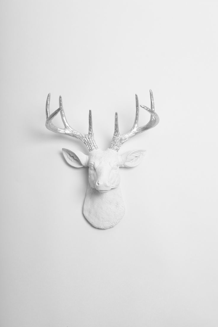 The 25 best white deer heads ideas on pinterest faux deer head the mini frankfurt stag deer head faux taxidermy white resin wsilver antlers silver wall decorsilver amipublicfo Choice Image