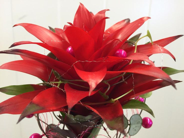 "Katri Gummerus on Twitter: ""#perjantaikimppu #fridayflowers @PirjoP1 @PKoppi @HolappaMarianne @MinnaFloral @vuodenfloristi @KatriGummerus http://t.co/UAkXG27xsu"""