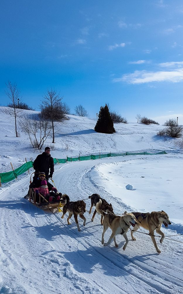 Dog sledding, just one of the fun winter activities you can do at Quebec's Winter Carnival. www.casualtravelist.com