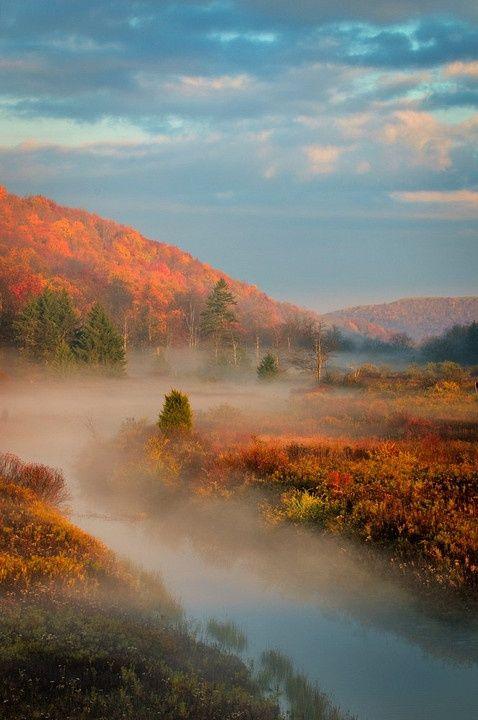 Monongahela National Forest, West Virginia.