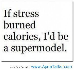 quotes about stress at work   apnatalks.comIf stress burned calories cute