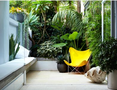 lush garden: Courtyards Gardens, Courtyards Design, Landscape Design, Small Courtyards, Butterflies Chairs, Yellow Butterflies, Outdoor Spaces, Yellow Chairs, Design Blog
