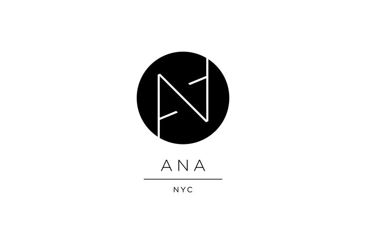 ANA Photographer Logo Design by Braizen