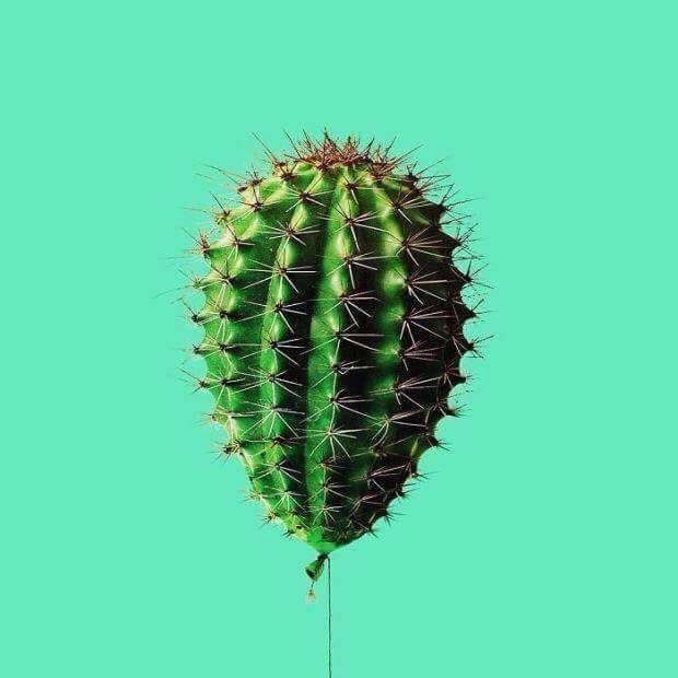 #cactus #baloon
