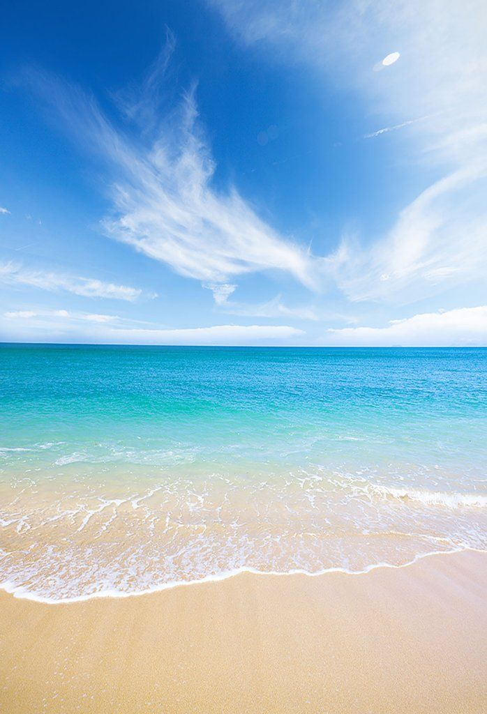 Ocean Backgrounds Beach Backdrop G 503 With Images Beach
