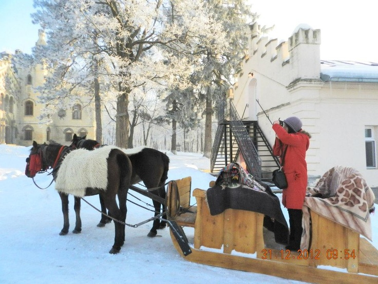 Horse Sleigh in Castle Park