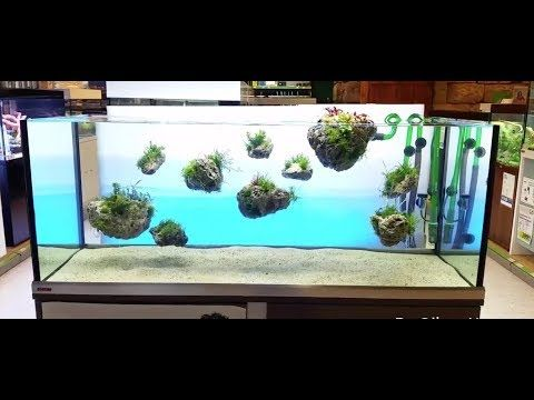 Www Exoaquaristic Com Au Products Aquascape Avatar Floating Rock