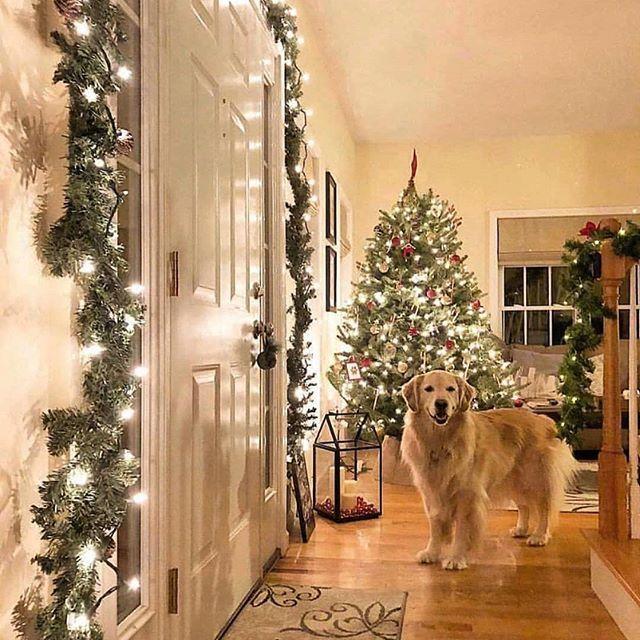 Como Decorar El Frente De Mi Casa En Navidad Decoracion Navidena Para Puertas Ideas Par Decoracion Navidena Decoracion De Puertas Navidenas Puerta De Navidad
